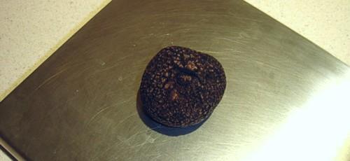 Trufa negra del Périgord