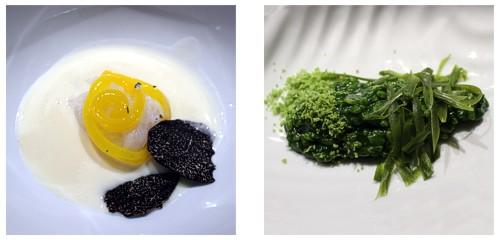 Sopa ibérica  &  Arroz de plancton 2.0