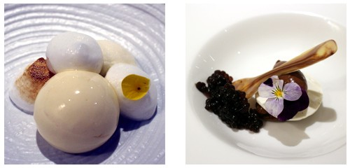 Lemon pie  &  Caviar de chocolate