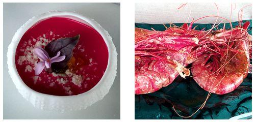Gazpacho  &  Gambas a la sal