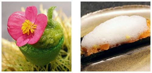 Cactus  &  Salmón